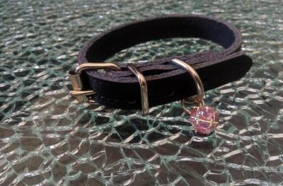 Collier chien, chiot, chat, cuir noir et perle strass rose