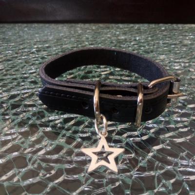 Collier chien, chiot, chat, cuir noir et étoile argentée